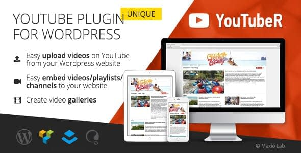 Best WordPress Plugin for Youtube Videos